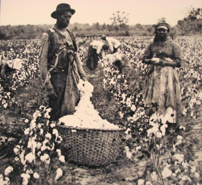 the abolition of slavery in the us a year
