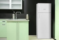 Fridge Vestel: reviews, manual, manufacturer